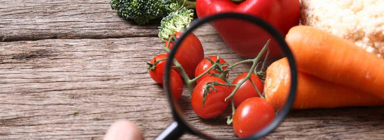 Ernährungsberater Voraussetzungen