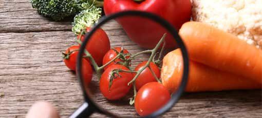 Voraussetzungen für die Ernährungsberater Ausbildung