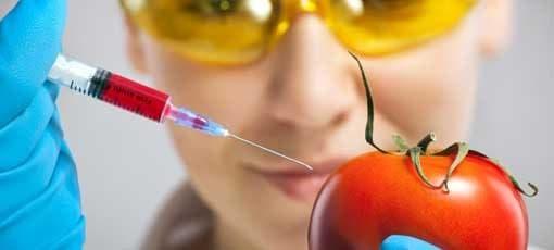 Fernstudium Ernährungswissenschaften
