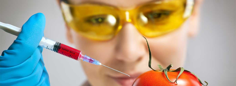 Ernährungswissenschaften - Frau steckt Spritze in Tomate