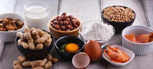 Ernährungsberater mit Schwerpunkt Lebensmittelunverträglichkeit